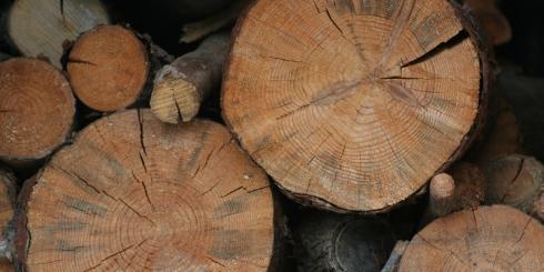 Tűzifa rezsicsökkentés