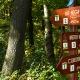 Óvatosabb léptekkel az erdőben