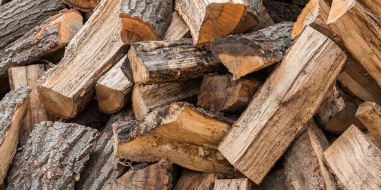 Óvakodni kell az illegális tűzifa árusoktól
